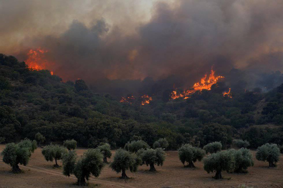 The fire in the Almorox area in Toledo,