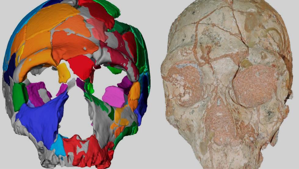 homo sapiens grecia