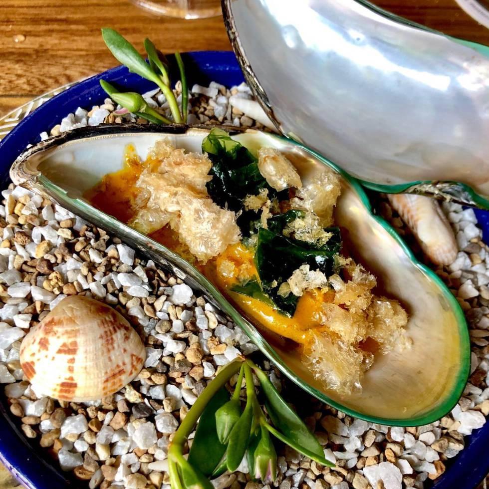 Mejillón gigante con aguacate, lechuga de mar y chicharrones capel