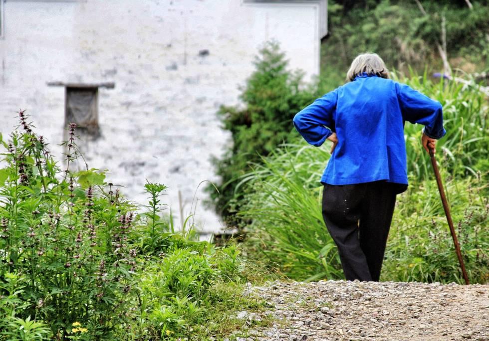 El lento avance hacia tratamientos para el envejecimiento humano