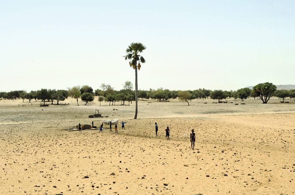 Sahel.  Uma paisagem desértica nesta região que une a África do Norte com a zona subsaariana.