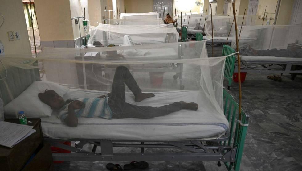 Varios pacientes afectados por dengue en un hospital.