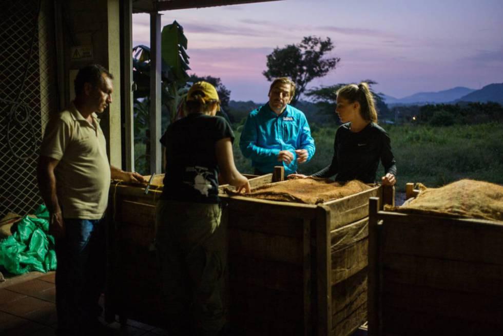 El chef observa los recipientes donde se guarda el cacao cultivado.