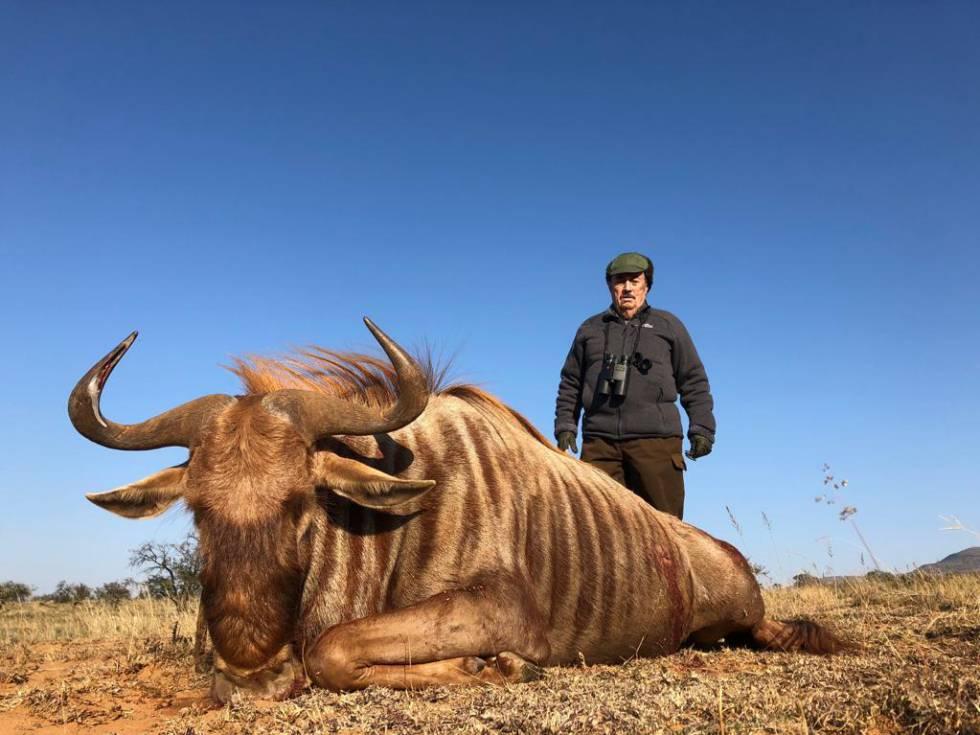 Marcial Gómez Sequeira posa con un ñu dorado recién tiroteado en Sudáfrica.