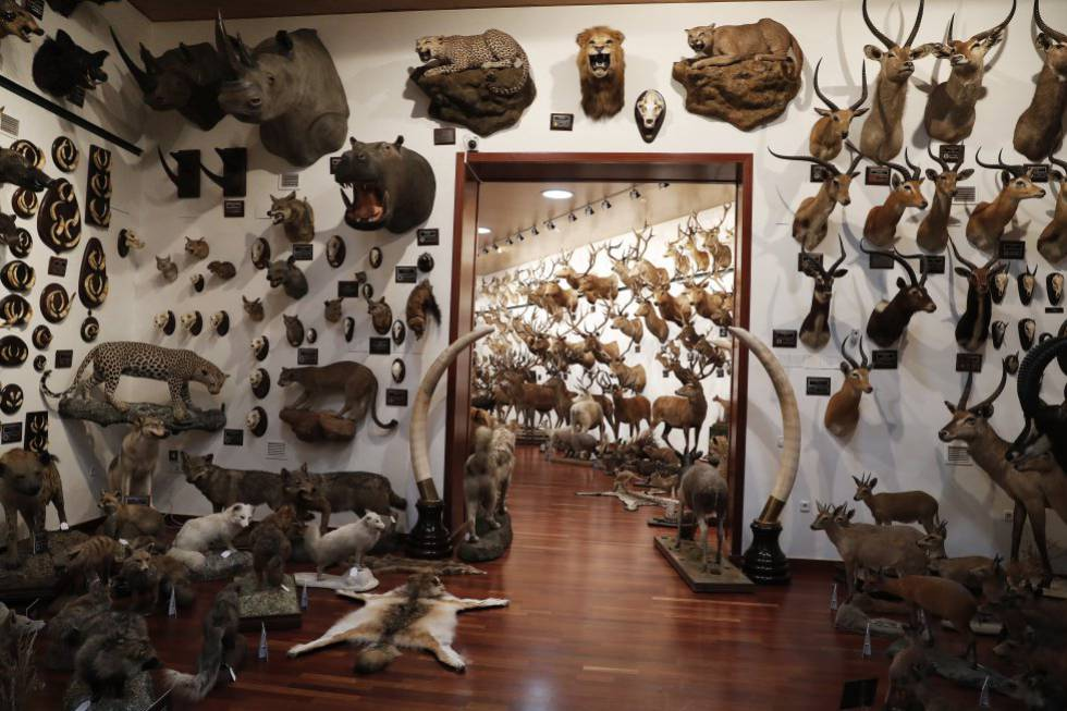 Vista del pabellón de caza internacional de Marcial Gómez Sequeira en su casa de La Moraleja.
