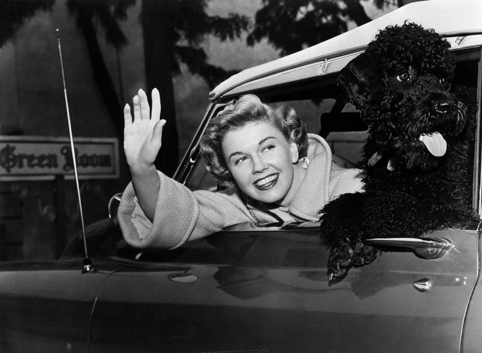 Doris Day en su coche con su perro en 1955. La actriz, que murió en 2019, pasó sus últimos años recluida en casa con sus animales.