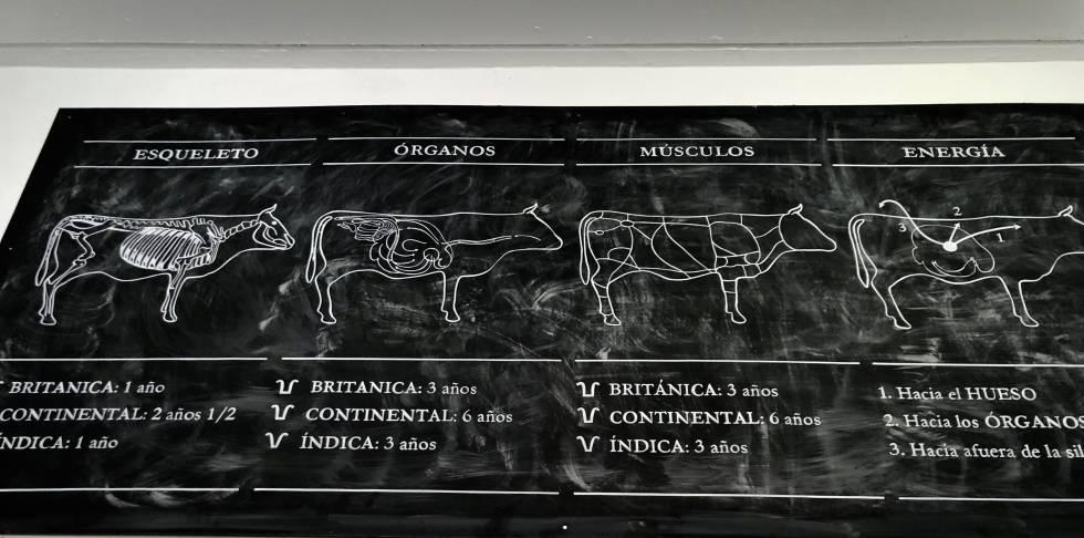 Parrilla Don Julio, el aula de las carnes argentinas