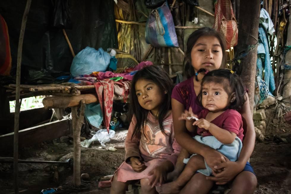 <br>Ocho millones de personas padecen hambre en Centroamérica: PMA