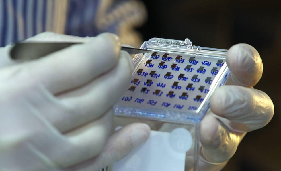 Una caja con los sensores ultrasensibles de la tecnología de la investigadora brasileña.