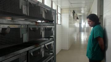 Una investigadora observa las instalaciones del bioterio de la Universidad Central de Venezuela, completamente abandonado.