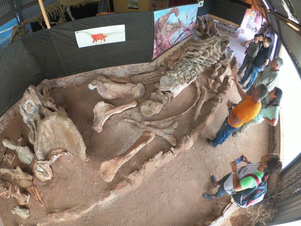 El hervíboro 'Futalognkosaurus Dukei' medía unos 34 metros de largo.