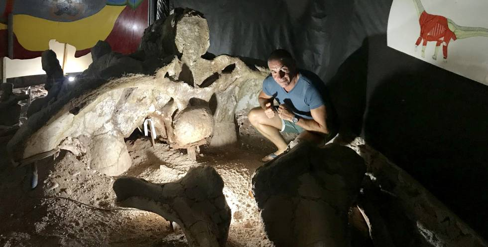 Paleontologist Jorge Calvo next to the largest hip in the world, almost three meters wide.