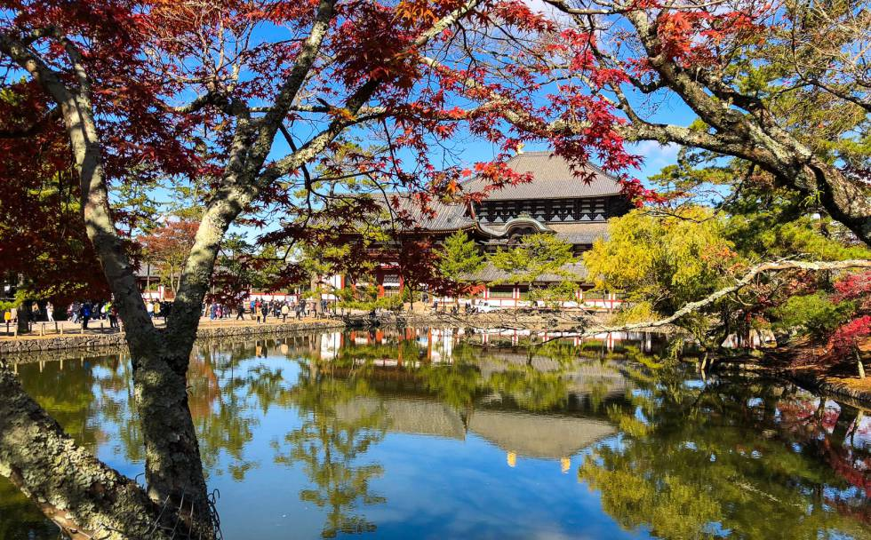 El Todaiji es el templo principal del parque de Nara, uno de los lugares más turísticos de Japón.