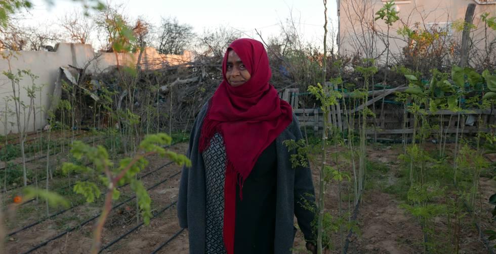 Leila en su huerto rodeada de moringas.