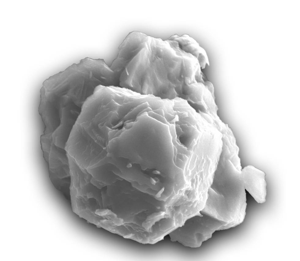 One of the analyzed silicon carbide grains seen with a scanning electron microscope.
