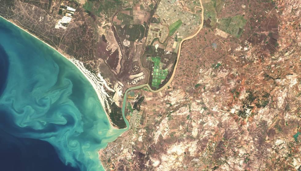 Fotografía de la desembocadura del Guadalquivir tratada por Isabel Caballero a partir de una imagen del 'Sentinel'. En ella se aprecia la turbidez generada por el estuario.
