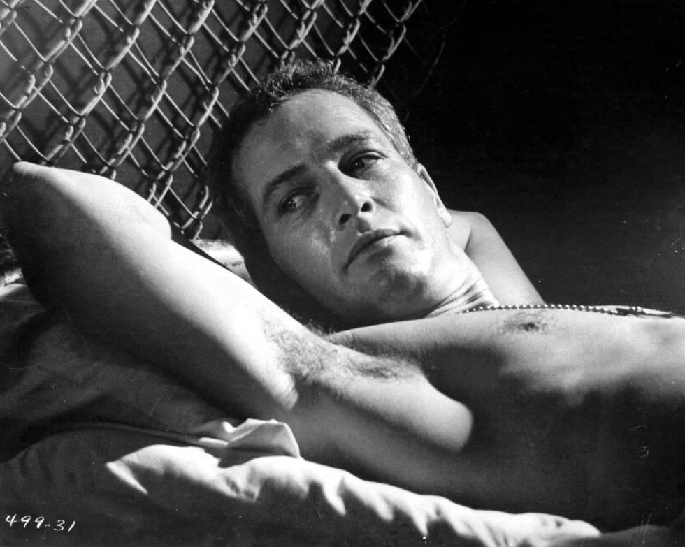 Paul Newman en una escena de 'La leyenda del indomable' (1967). Por esta película fue nominado, al igual que por otras ocho. Solo le llegó el Oscar a Mejor Actor bastante tarde, en 1986, por 'El color del dinero', cuando ya tenía 61 años.
