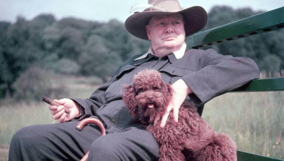 Winston Churchill en su finca de Chartwell en 1950.