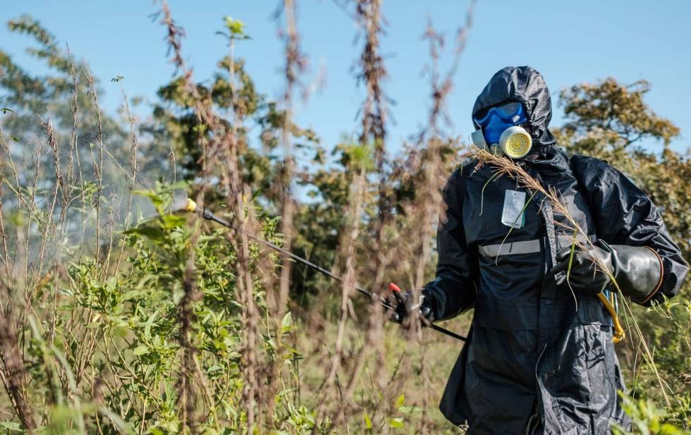 Un soldado rocía con insecticida plantas en Otuke, Uganda.