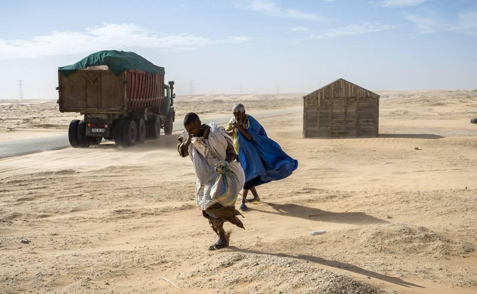 Pastores nómadas bajan a Tiwilit a cambiar leche de camella por otras mercancías.