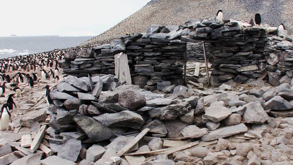Restos del refugio que la tripulación del 'Antartic' construyó en la isla Paulet para sobrevivir al invierno de 1902.