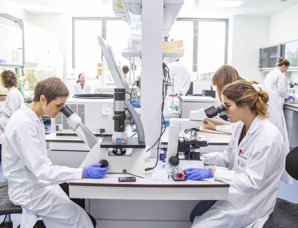 Laboratorio de la universidad Humanitas en la que el profesor Mantovani investiga acerca del Covid-19 gracias a fondos proporcionados por Dolce & Gabbana.