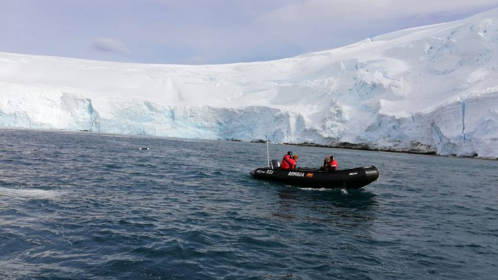 Recogida de microplásticos con una red en la costa antártica del proyecto AntarPLAST.