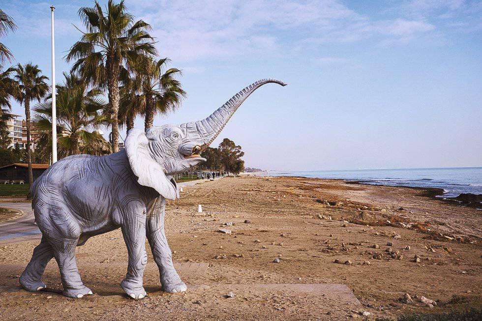 Elefante en la playa junto a Marina d'Or, en Oropesa, paraíso de la imitación.