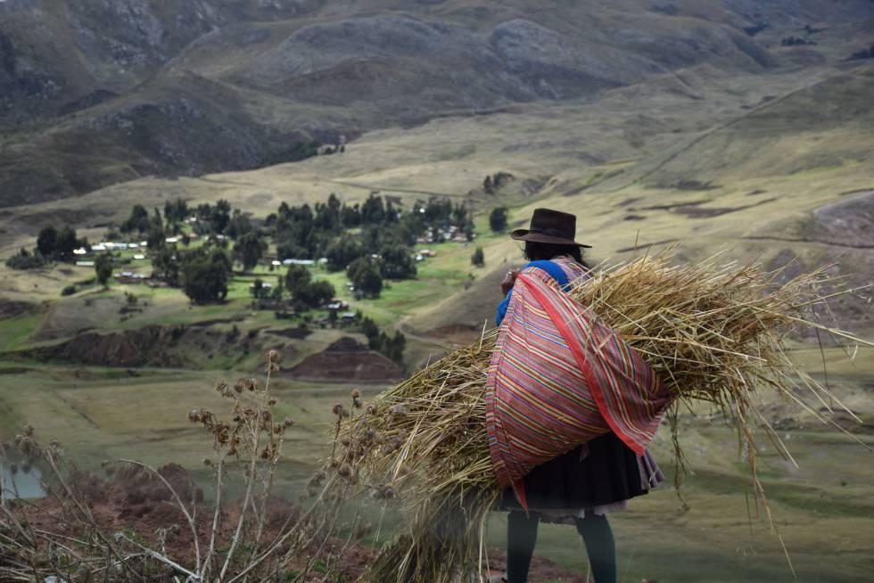 Las medidas barrera deben tomar en cuenta la realidad sociocultural de los indígenas para ser eficaces