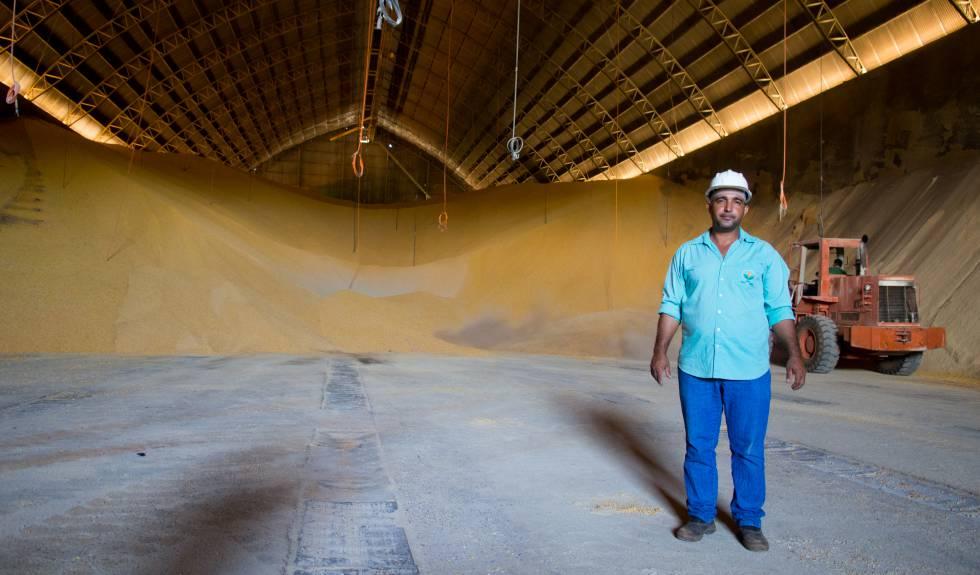 Un empleado en Sinop muestra un enorme depósito de grano, donde la soja y el maíz son almacenados a temperatura y humedad controlada para, paulatinamente, ser transportados por camión y luego exportados.