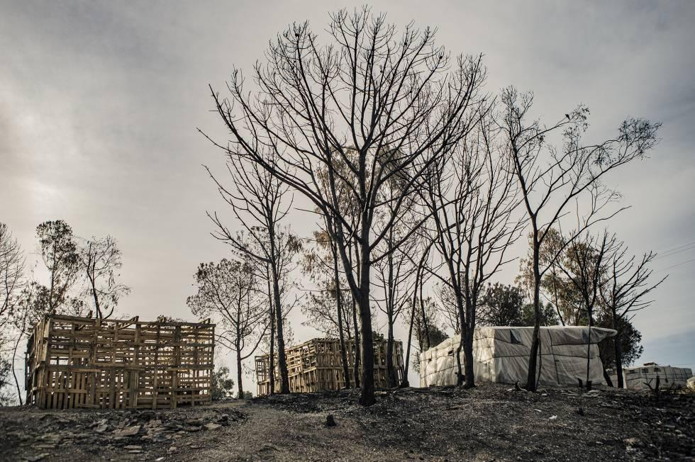 Chabolas en construcción tras un incendio ocurrido en abril de este año en un asentamiento en Palos de la Frontera (Huelva). En 2019 se contabilizaron 16 incendios en poblados de temporeros e inmigrantes en esta provincia.