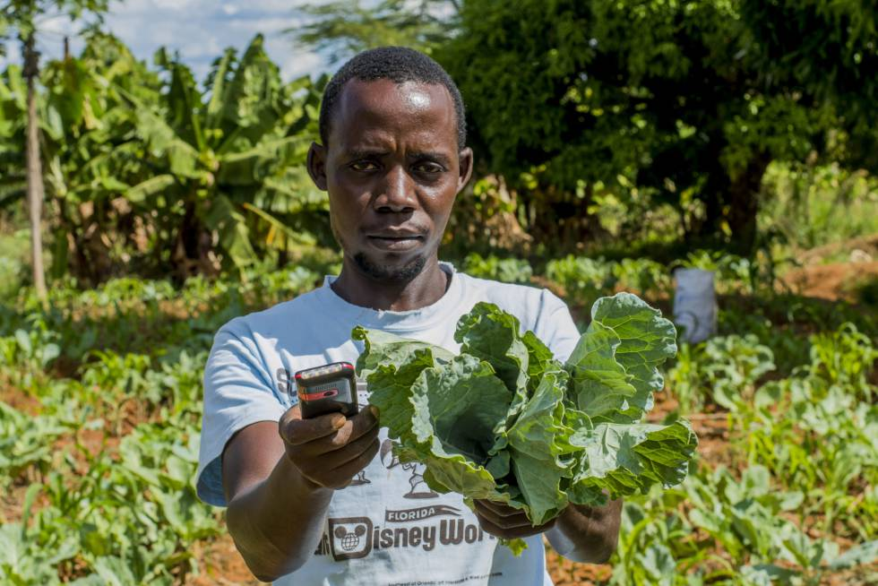 Agri-wallet es una plataforma que ofrece financiación a pequeños agricultores kenianos. Imagen cedida por la empresa.