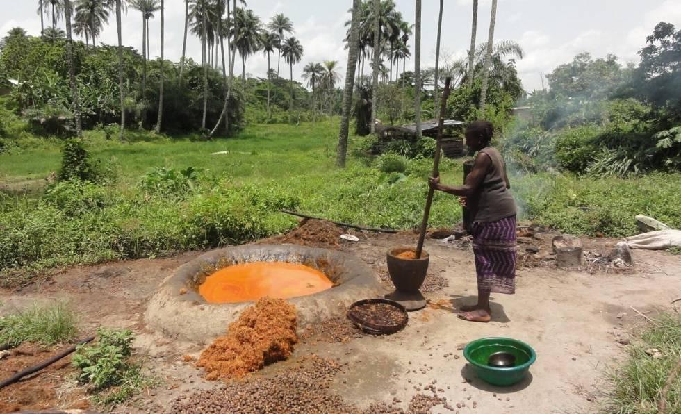 Pequeños agricultores, quienes siempre han producido aceite de palma a nivel local, se ven a menudo marginados por grandes multinacionales u obligados a trabajar en condiciones deplorables para ellas.