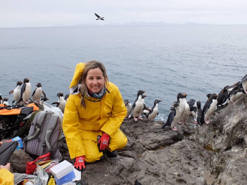 Juliana A. Vianna, recogiendo muestras de pingüinos papúa en la Antártida.