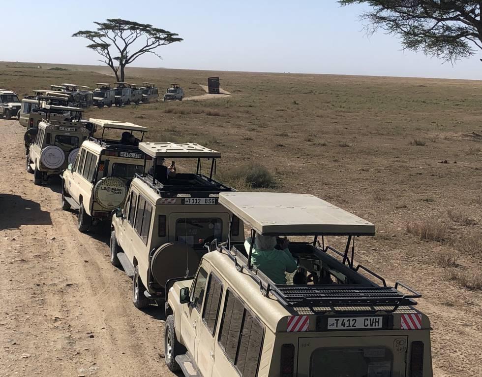 Caravana de casi una veintena de vehículos en Serengeti, septiembre 2019.