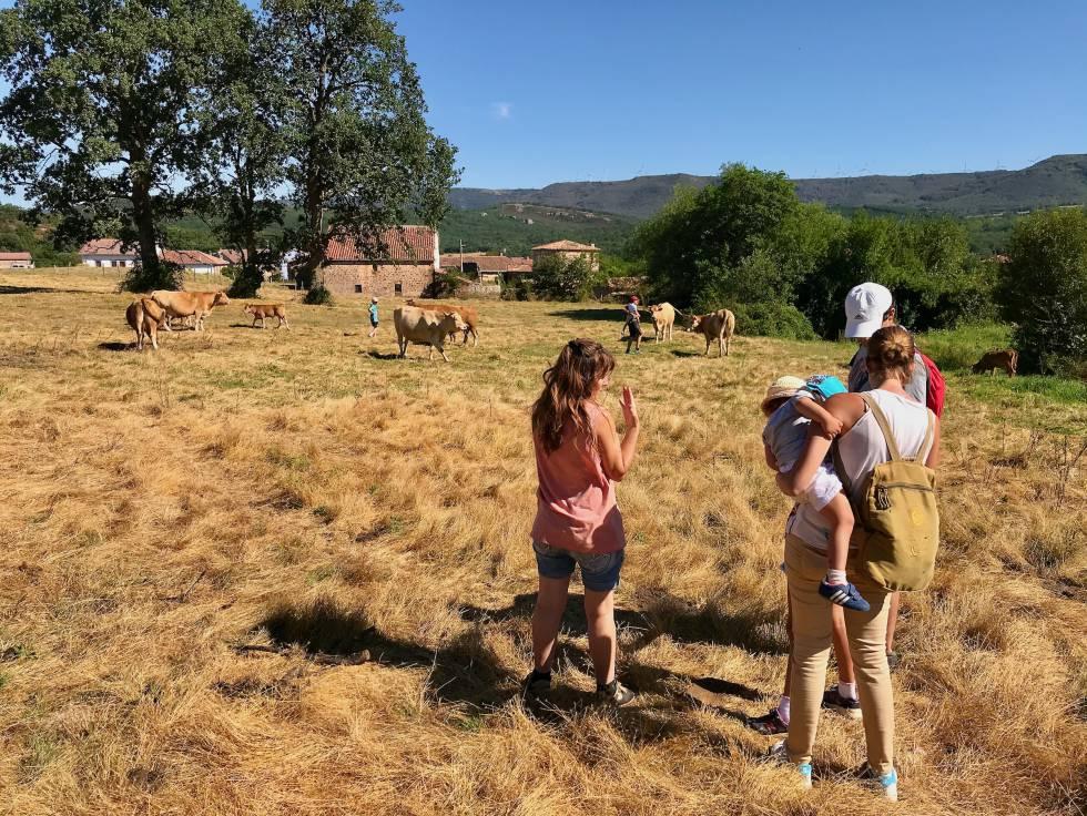 Beatriz Argüeso, a la izquierda, es ganadera en la finca Casa La Pastiza. (Valderredible-Cantabria). Forma parte de las prácticas en la Escuela de Pastoras del siglo XXI.