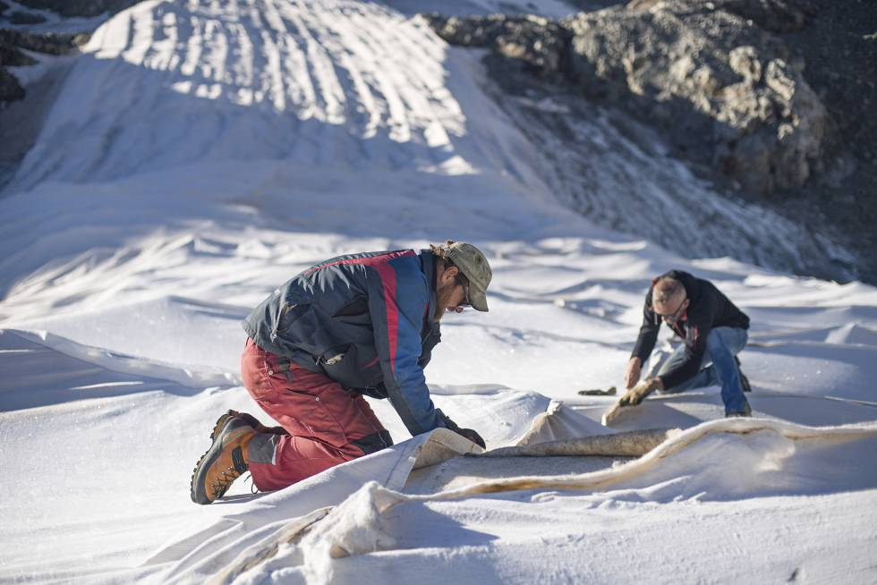 Dos personas retiran la tela protectora del glaciar alpino de Persena tras el verano.