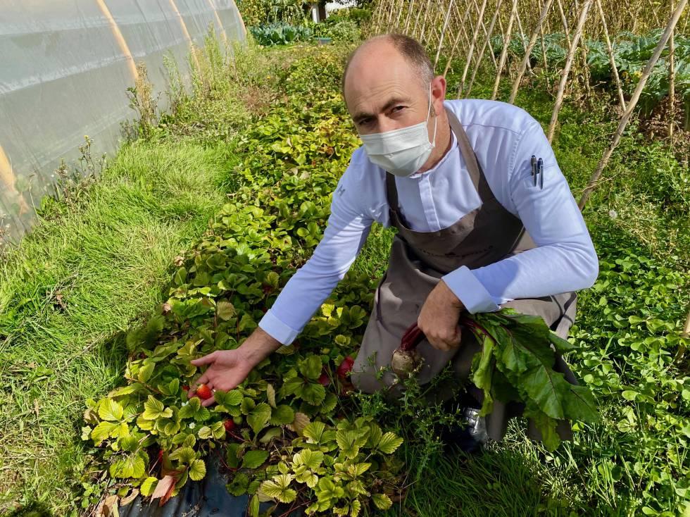 Ignacio Echapresto mostrando fresas en Octubre. J.C. CAPEL