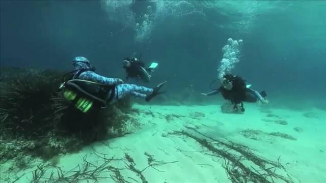Inmersión con el salvador de la posidonia