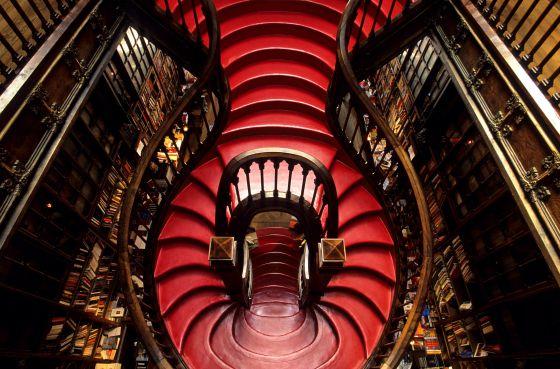 Hechizo en la librería de Harry Potter