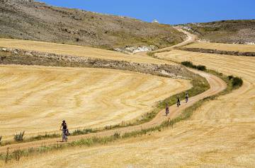 Pilgrims pedal their way between Rabé de las Calzadas and Hornillos del Camino along a stretch of the Camino de Santiago in Burgos province.