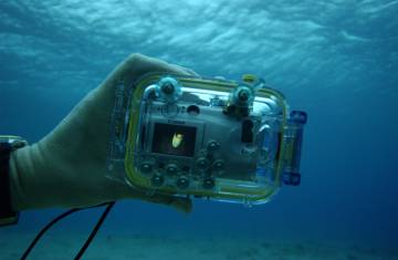 Una carcasa submarina para la cámara abrirá un mundo fotográfico fascinante bajo el agua.