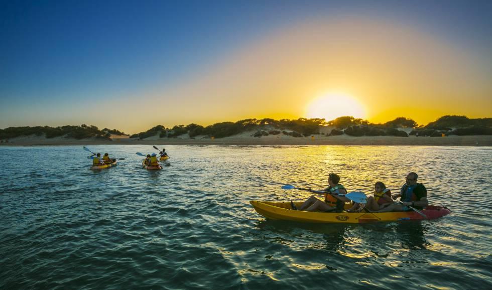 Excursión en Kayak por las marismas de la bahía de Cádiz.