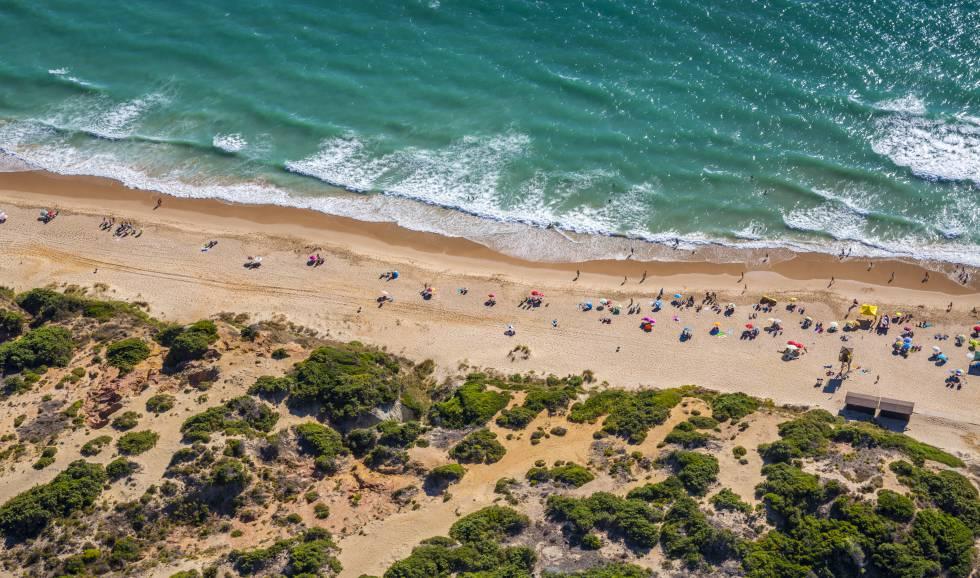 La playa y las dunas cercanas al poblado de Sancti Petri, en la costa de Cádiz.