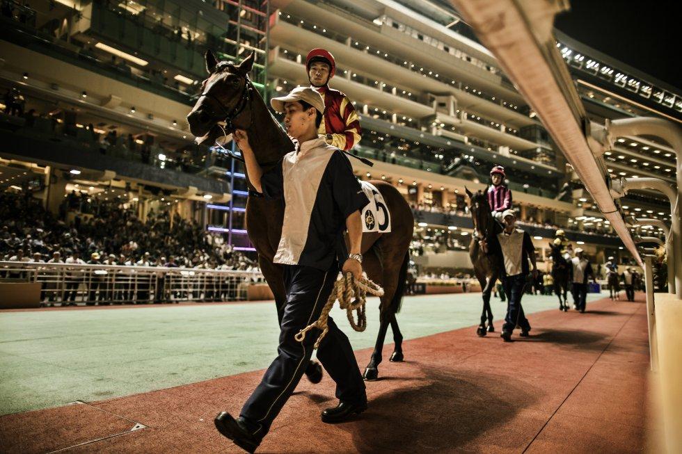 Aunque no apostemos, asistir a una trepidante tarde de miércoles en este hipódromo urbano es una de las experiencias más intensas y auténticas de Hong Kong: las carreras de caballos son el deporte-espectáculo más popular de la ciudad. De septiembre a junio, el hipódromo bulle semanalmente con ocho carreras y un festival de comida y bebida. Una posibilidad interesante es apuntarse al Come Horse-racing Tour que se celebra durante las carreras. Dura cinco horas y media en las sesiones nocturnas y siete durante las carreras diurnas e incluye la recogida del viajero, la entrada al Jockey Club, un bufé y un circuito guiado por la zona de desfile y la meta (hkjc.com).
