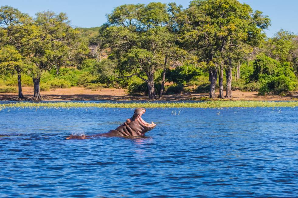 10 paisajes espectaculares del sur de África