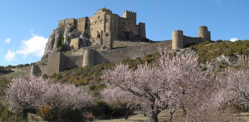 Almendros ante el castillo de Loarre, en Huesca.