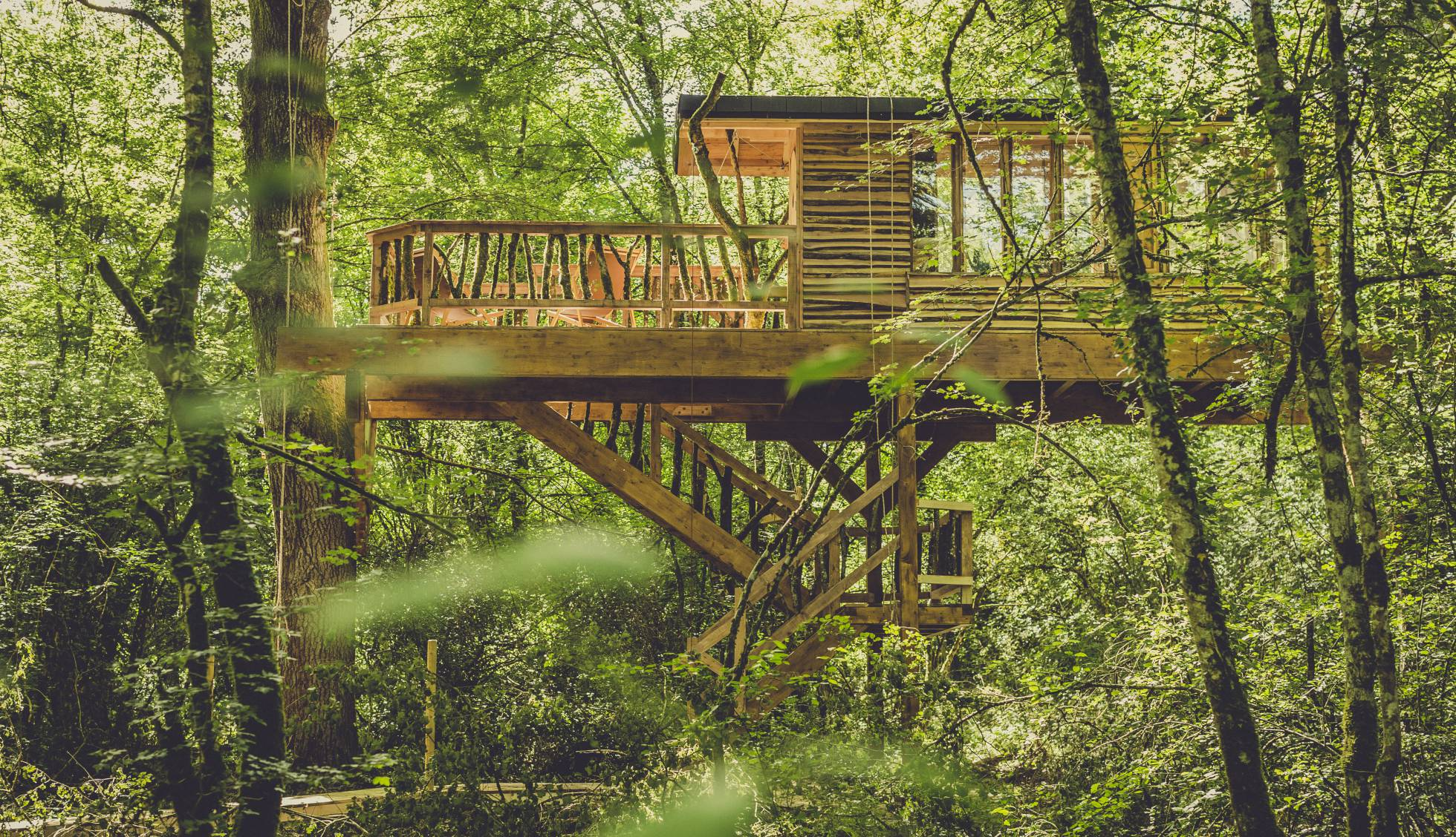 Fotos: 13 cabañas donde puedes pasar una noche en los árboles | El ...