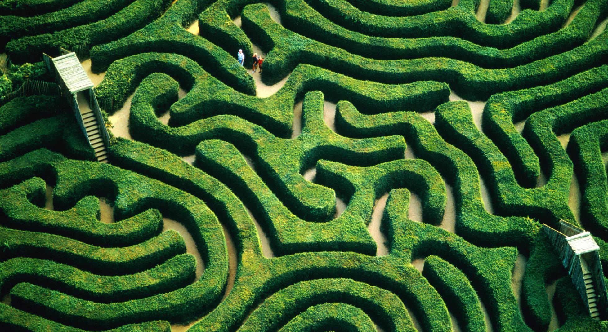 15 laberintos verdes para jugar al escondite