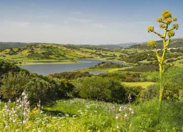 Il lago di Liscia, in Sardegna.
